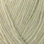 Wendy Aran with Wool, 100g, Biscuit (471)