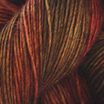 Dream in Color Everlasting DK, Daylilly (ED739)