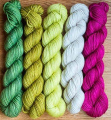 SweetGeorgia Party of Five, Mini-Skein Yarn Set. Snapdragon