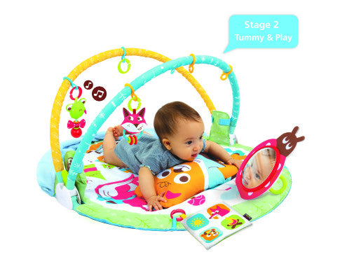 PLAY 'N' NAP ACTIVITY GYM