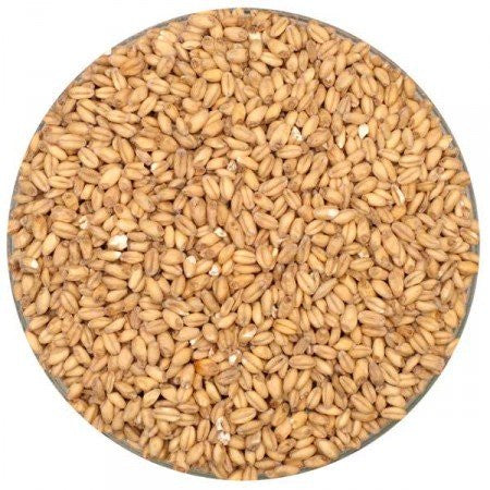 Briess White Wheat Malt Whole Grain