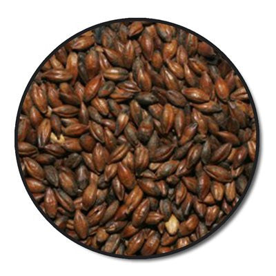 Briess Chocolate Malt Whole Grain 1 lb