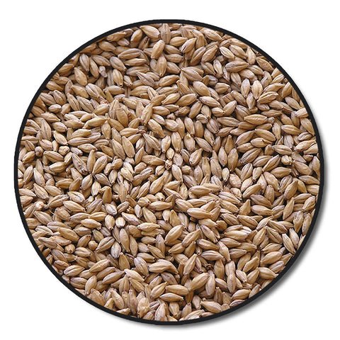 Crisp No.19 Floor Malted Maris Otter Malt Bulk