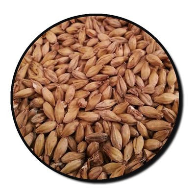 Franco-Belges Kiln Amber Malt Whole Grain 1 lb