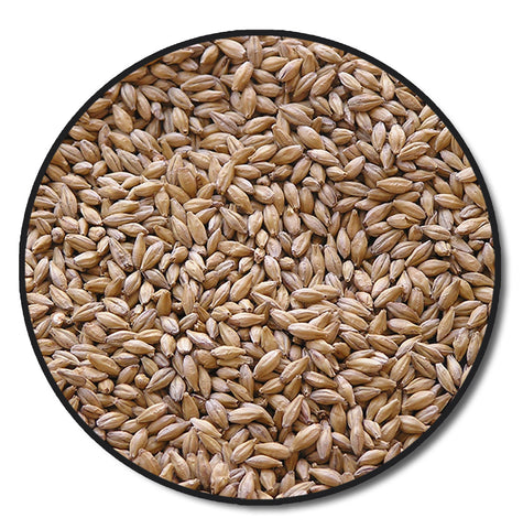 Chateau Abbey (Monastique) Malt 1 lb