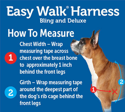Steps to Measure Harness