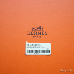 Hermes L'Instruction du Roy Cashmere/Silk 140cm Shawl