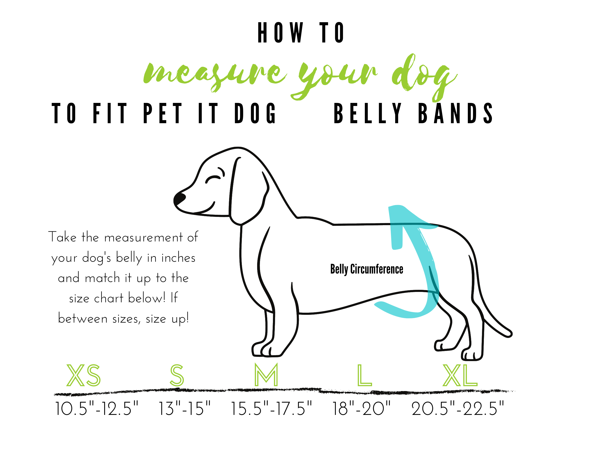 Dog Belly Band sizes
