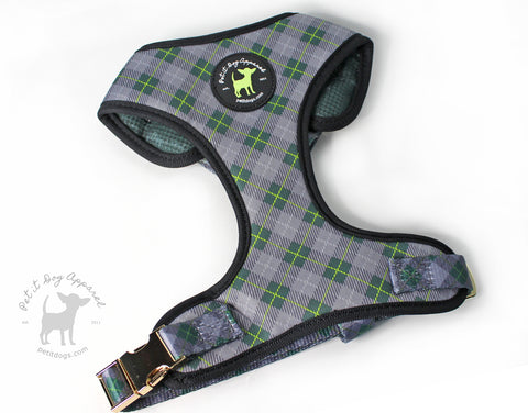 Adjustable Dog Harness Signature Plaid with gold hardware
