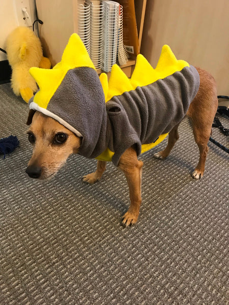 Dog Costume Dinosaur Spikes Grey and yellow fleece dog Hoodie dragon costume