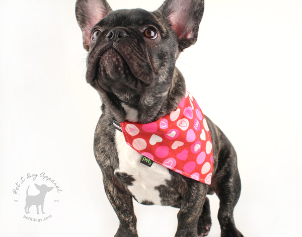 Dog Bandana Valentine's Day Heart slip on bandana for adorable pets