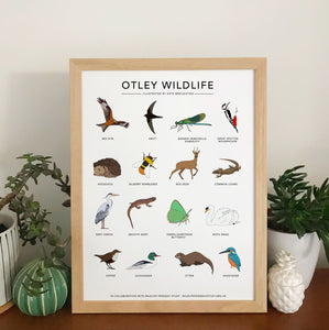 Otley Wildlife print in collaboration with Wildlife Friendly Otley