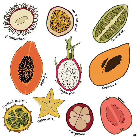 exotic tropical fruit illustrations by Kate Broughton
