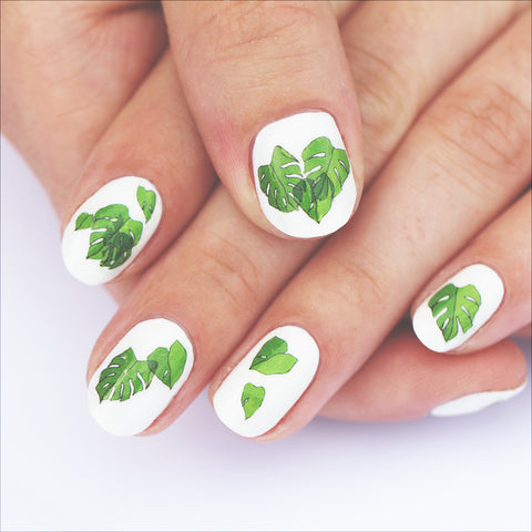 Houseplant Nail Art Transfers