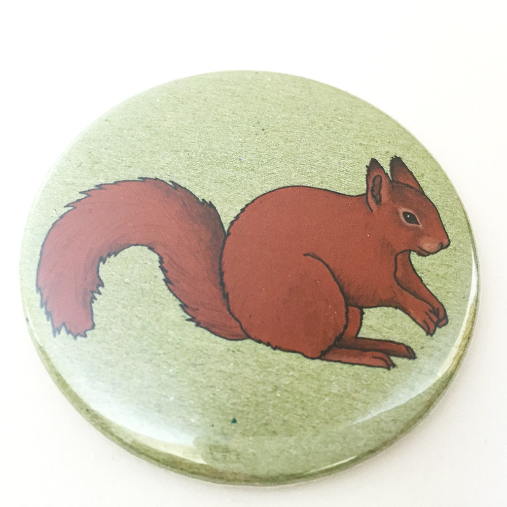 Red Squirrel pocket mirror