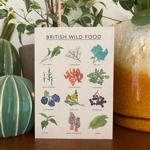British Wild Food Illustrated Card