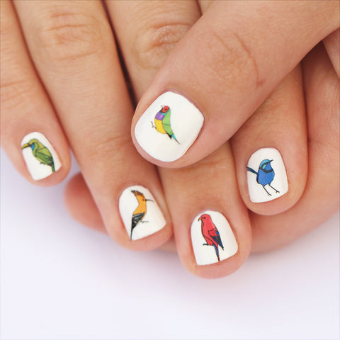 Exotic Bird Nail Art Transfers