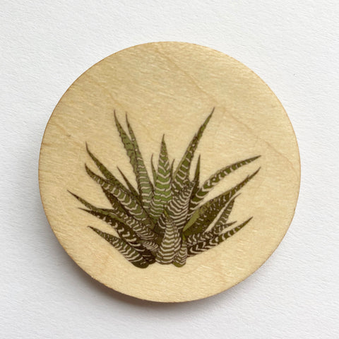 Howarthia plant wooden brooch