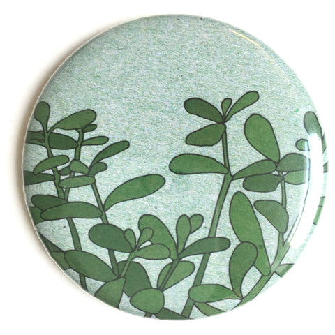 Houseplant pocket mirror