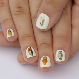 Owl Nail Art Transfers