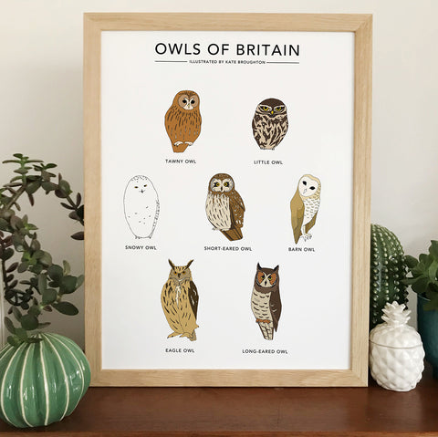 Owls of Britain Print