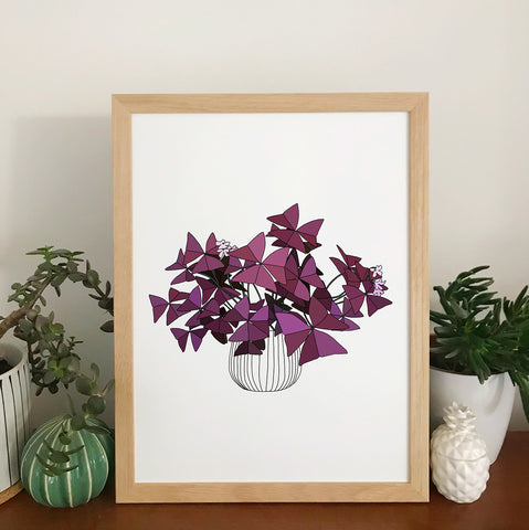 Oxalis Triangularis Plant Print