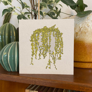 String of Pearls houseplant card