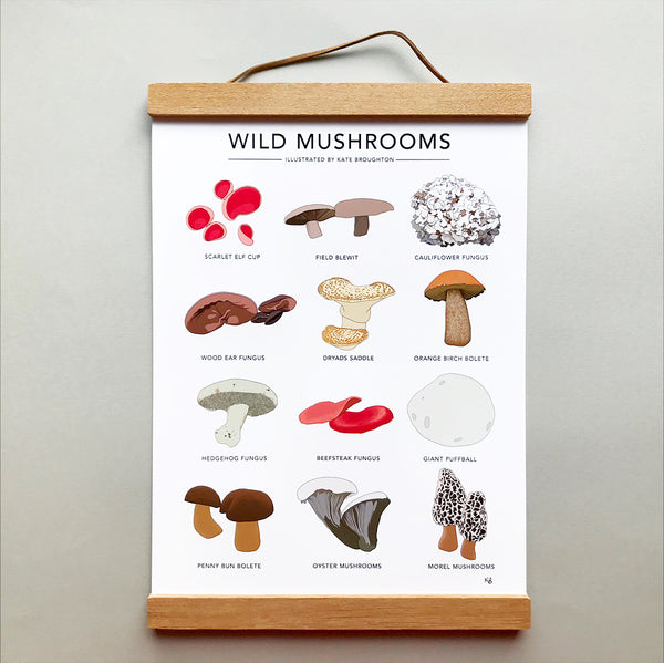 Wild Mushrooms Print