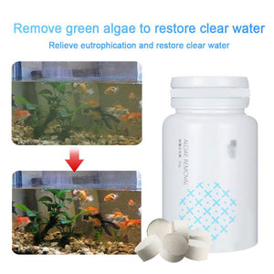 Remover Aquarium Algaecide Cleaning Tool
