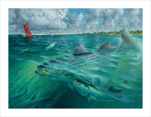 painting of a striped bass and a bluefish competing for a lure, The Steal