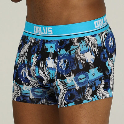 ORLVS Brand male underwear underpants