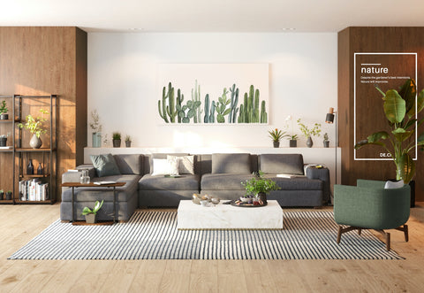 Furnishing with Nature, Ways to Choose and Style your Space with plants