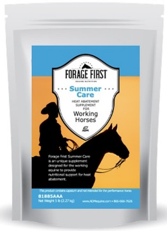 Forage First Summer Care