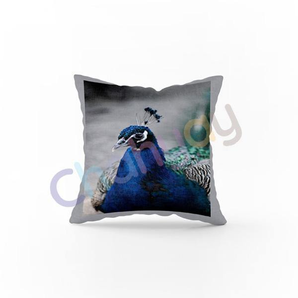 Peacro Cushion