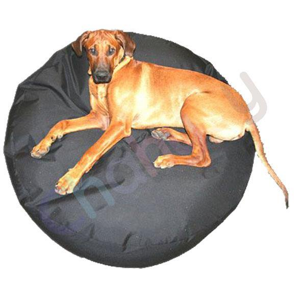 dog Bean Bag