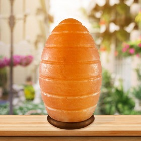 Salt Lamp Egg Carved Shape