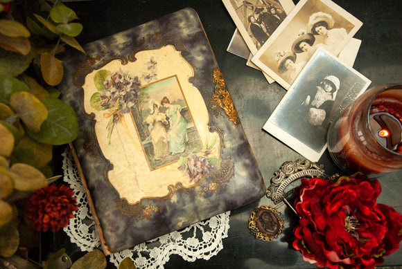 Antique photo album, ornate violets Victorian Edwardian women friends dresses, purple velvet gold floral scrapbook picture book 1800s