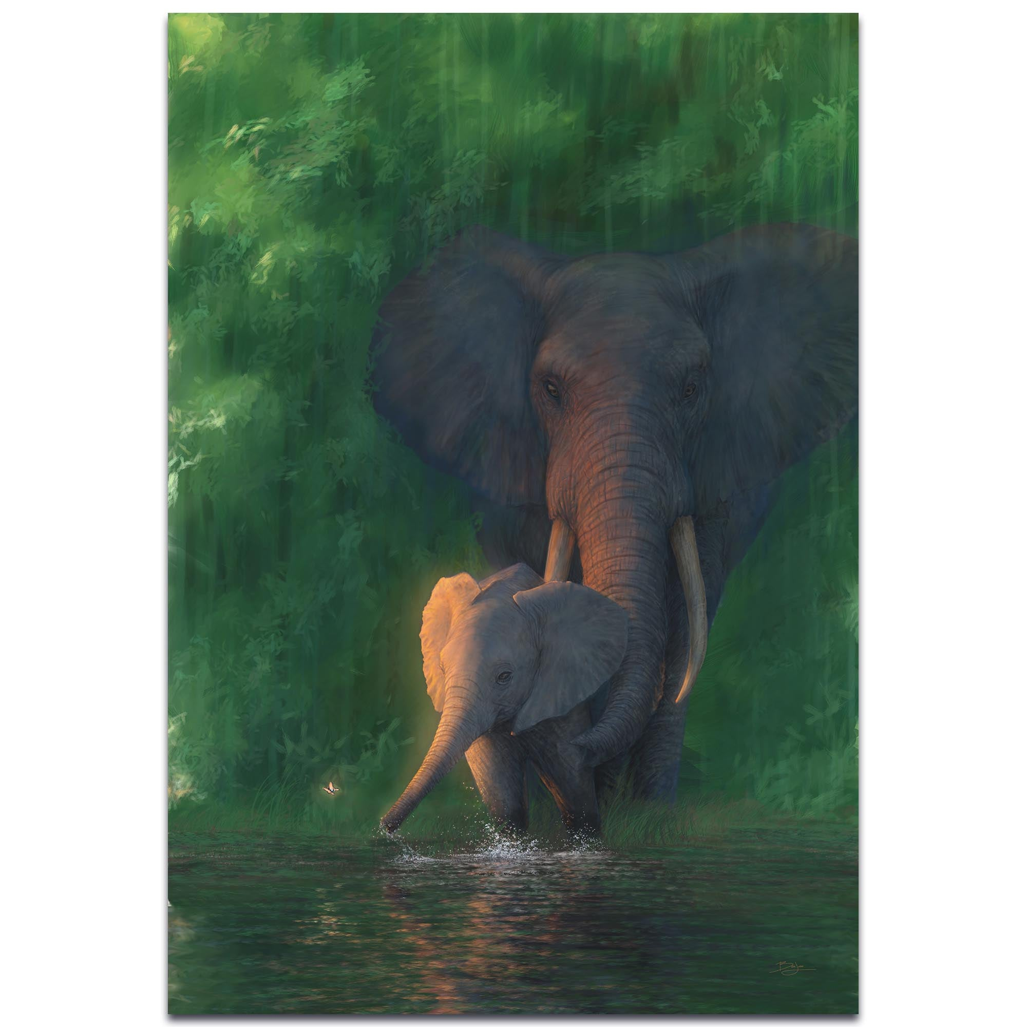 Carefree Calf by Ben Judd - Elephant Wall Art on Metal or Acrylic