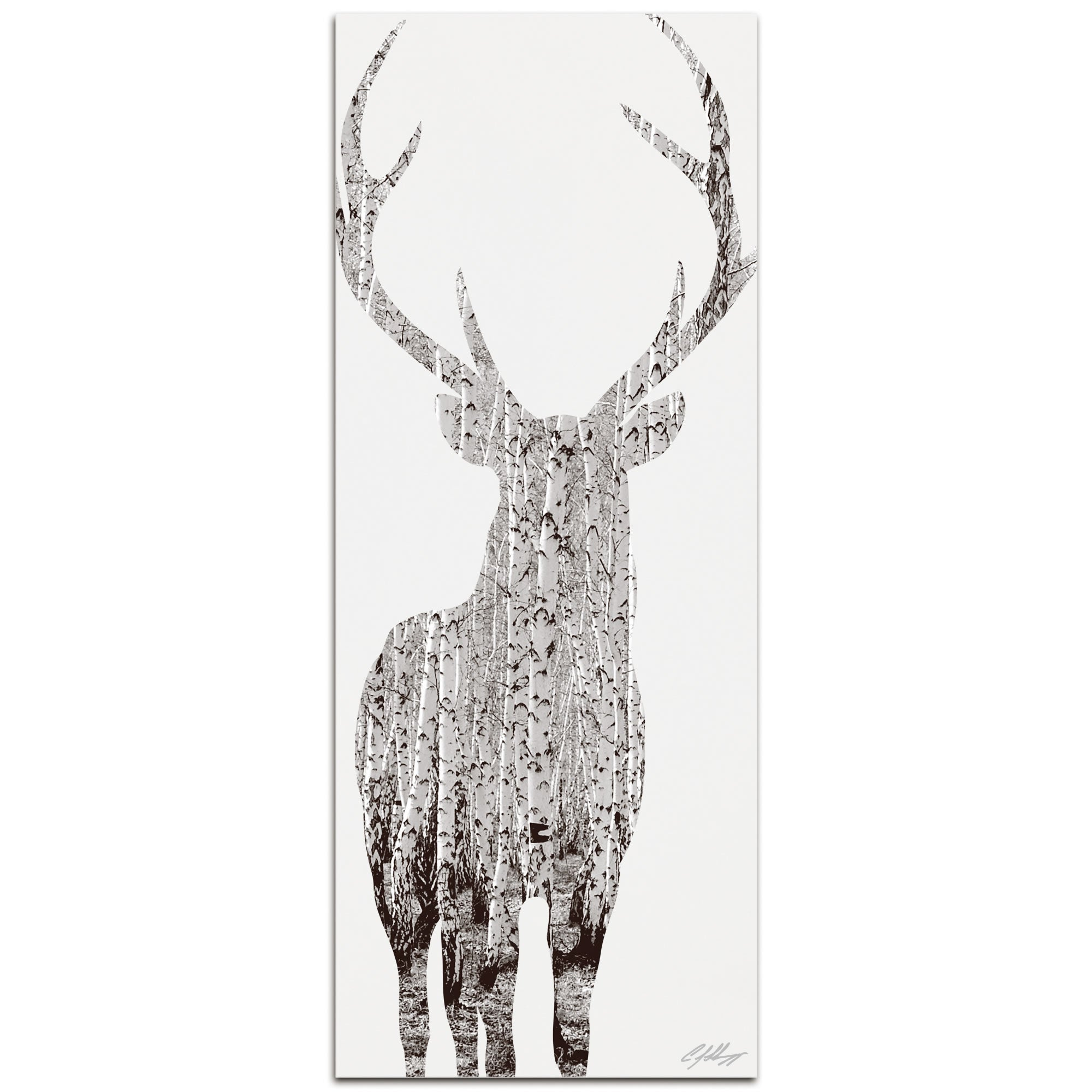 BIRCH DEER | 48x19 in. Metal Animal Print