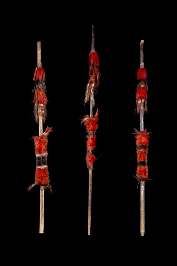 Three Naga Spears – Late 19th / Early 20th Century India/Burma – Ex Allan Stone Collection