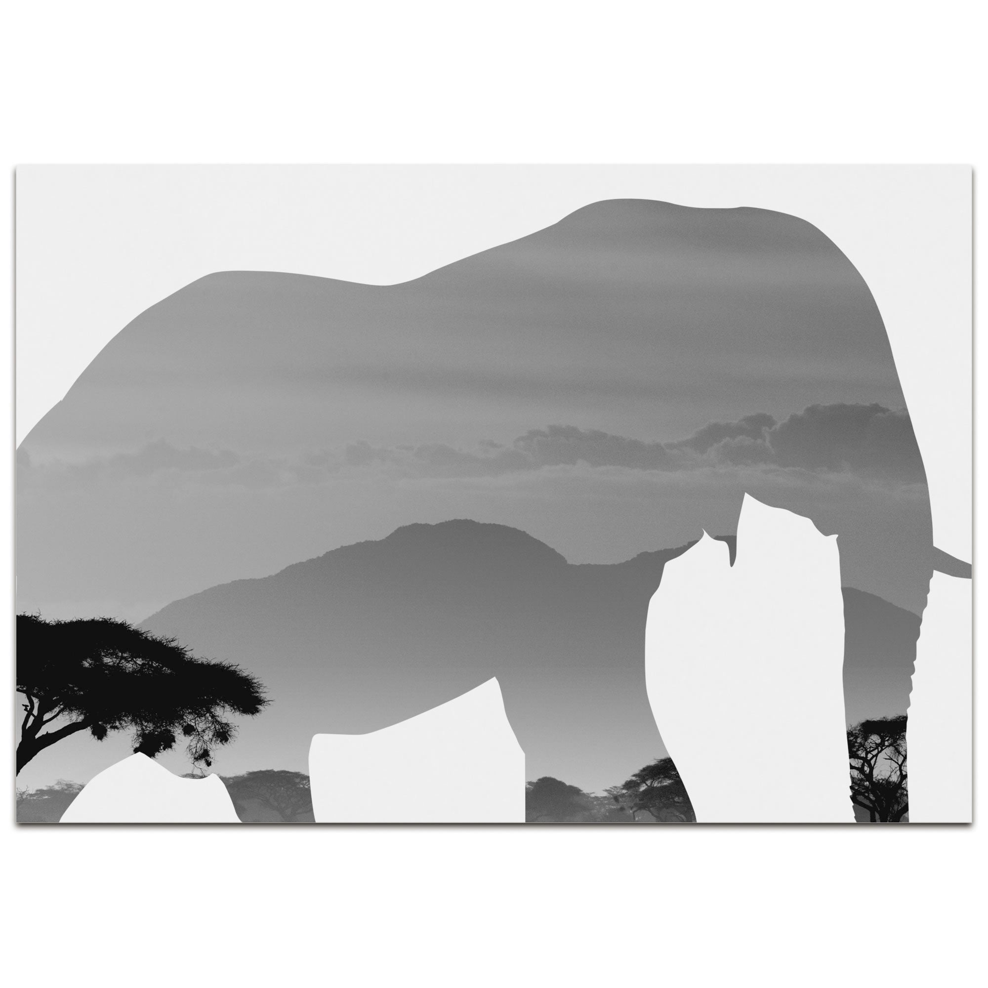 ELEPHANT SAVANNA | 32x22 in. Metal Animal Print