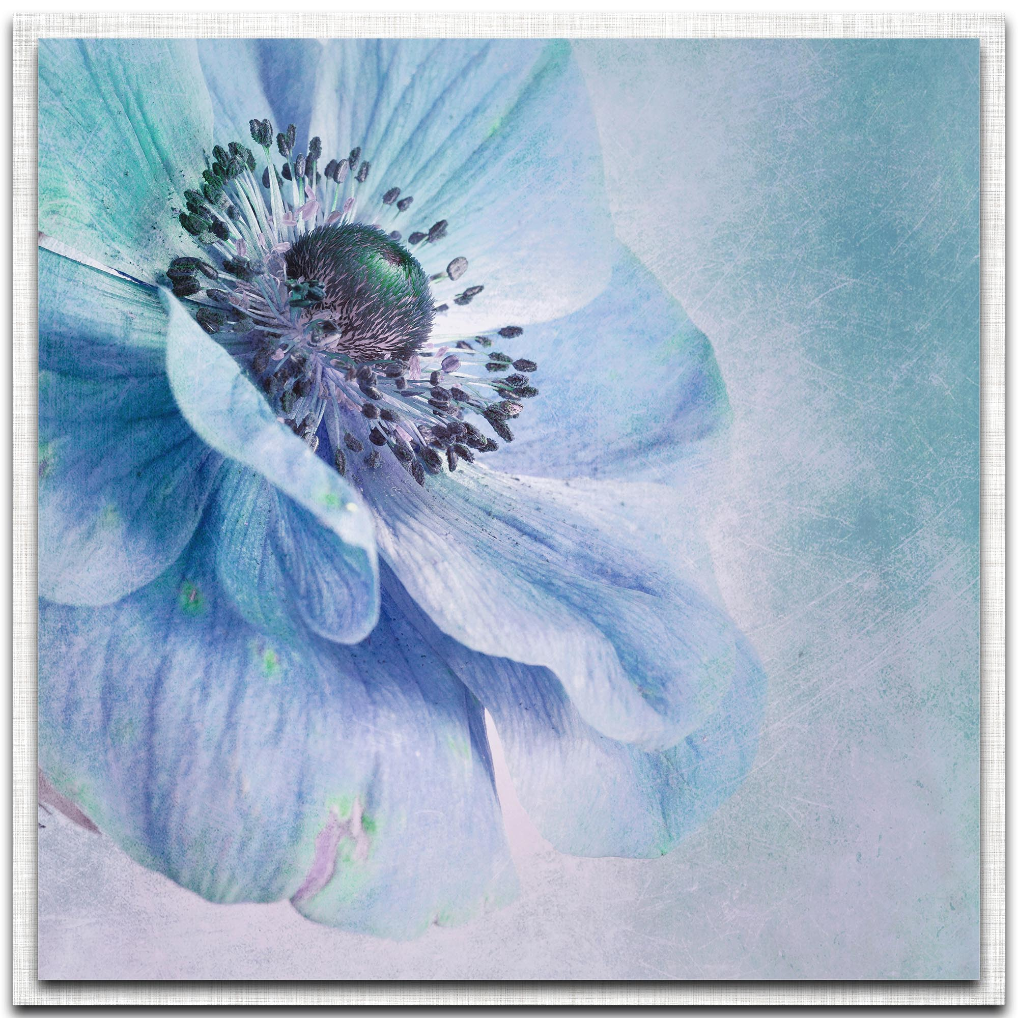 Shades of Blue by Priska Wettstein - Modern Farmhouse Floral on Metal