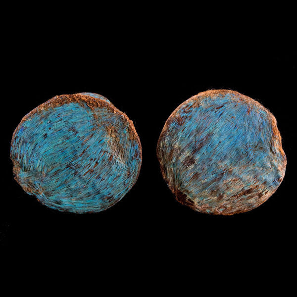 Pair of Wooden Earspools Covered with Iridescent Turquoise Blue Feathers