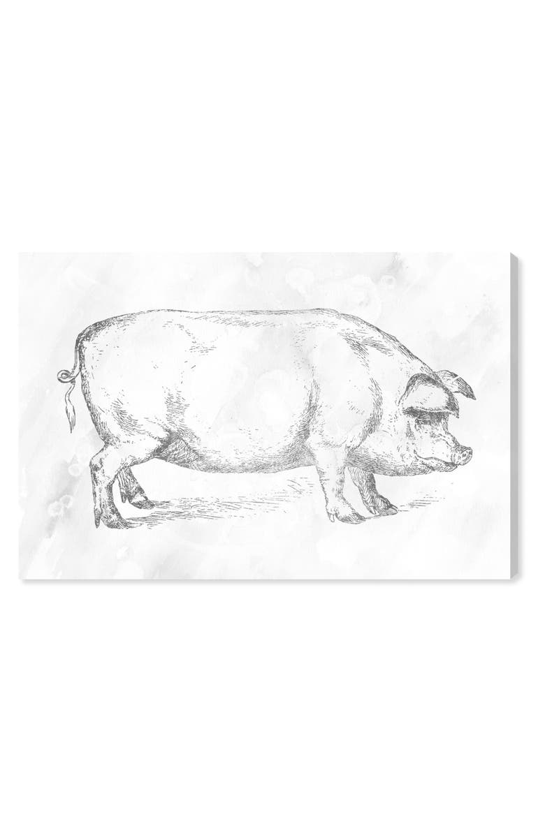 Silver Pig Canvas Wall Art