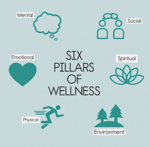 What is Wellness ?