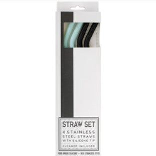 Silicone Tip Stainless Steel Straws with Cleaner