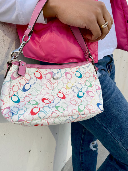 Multicolored Baguette Handbag