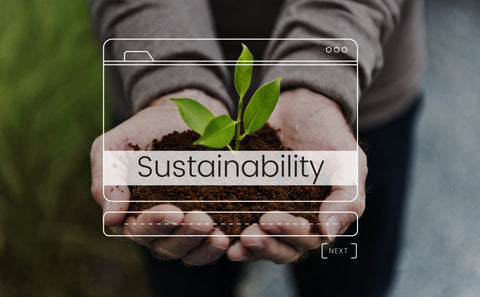What is sustainability & environmentally friendly lifestyle