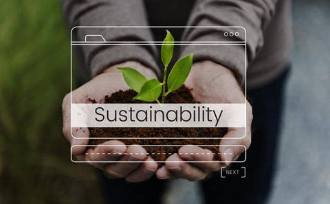 lity & environmentally friendly lifestyle picture showing a white sustainability graphic in the foreground and a persons hands cupping some soil with a leafy young green plant growing from the soil.