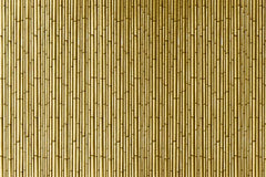 A sheet of light brown Bamboo stalks, shoots or stems.
